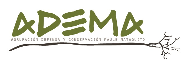 Agrupación Defensa y Conservación Maule Mataquito  (ADEMA), South America  – Is a Chilean grassroots community organization to raise awareness in the community on issues of environmental education, respect for culture and nature, as well as to commit to the conservation of local biodiversity.
