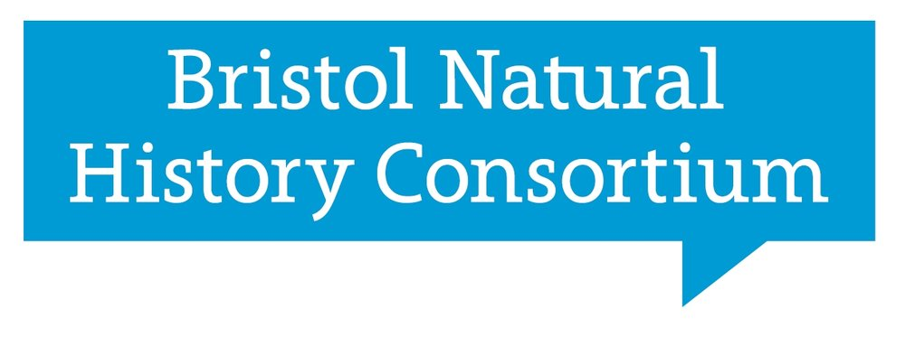Bristol Natural History Consortium , Europe:  A unique charitable partnership of 14 organisations from the worlds of conservation, policy, research and media. Through their public, volunteer and professional facing programmes, Bristol Natural History Consortium is committed to engaging people with nature, facilitating opportunities for people to experience the natural world and creating transformational moments that lead to lifelong personal connections.