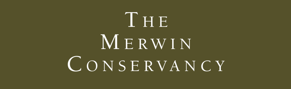 Merwin Conservancy , North America:  A non-profit organization using their conservation, education, and outreach programs to continually reach new audiences with Merwinʻs story and message, and to continue to offer extraordinary and inspiring nature experiences in the Merwin Palm Forest.