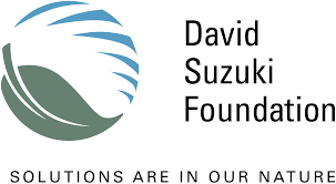 David Suzuki Foundation , North America: Collaborates with Canadians from all walks of life, including government and business, to conserve our environment and find solutions that will create a sustainable Canada through science-based research, education and policy work. One of their primary goals is to assist Canadians, especially youth, to learn about their dependence on a healthy environment and the benefits of time in nature through outdoor education and opportunities.