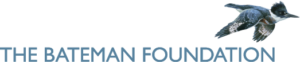 Foundation-logo_long_blue-300x62.png