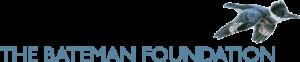 Foundation-logo_long_blue-300x62.png
