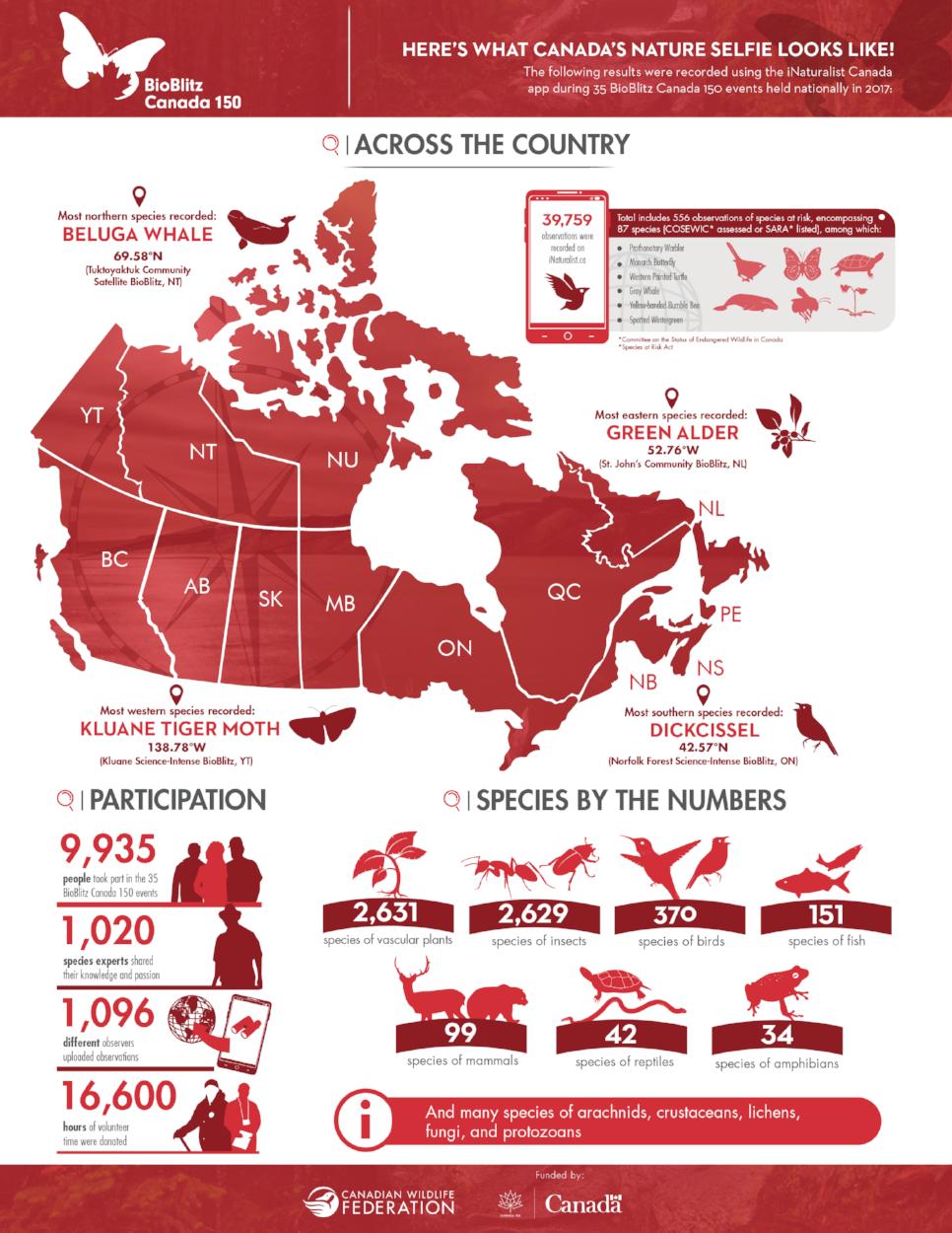 cwf_bioblitz_infographic.png
