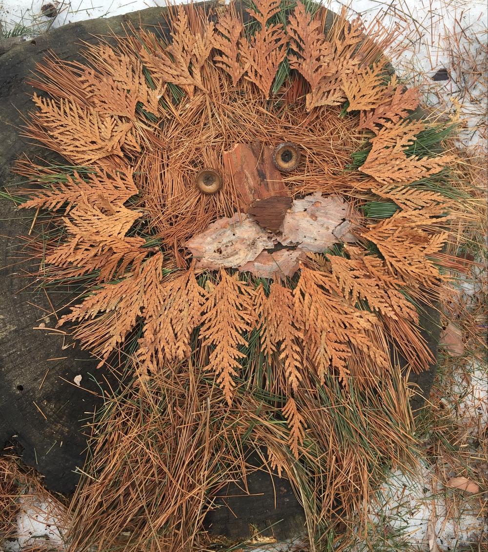Image of: Digital Art Lionpng Izismilecom Nature Art In Westwood Hills Nature Center St Louis Park Mn