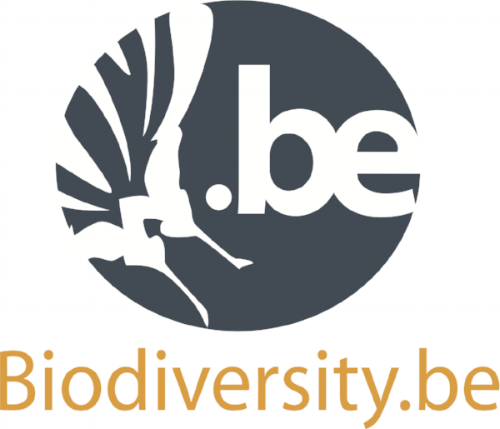 logo  ok 2017.png