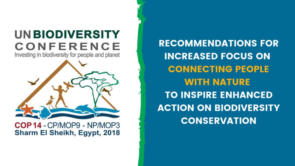 Recommendations for Increased Focus on Connecting People With Nature to Inspire Enhanced Action on Biodiversity Conservation