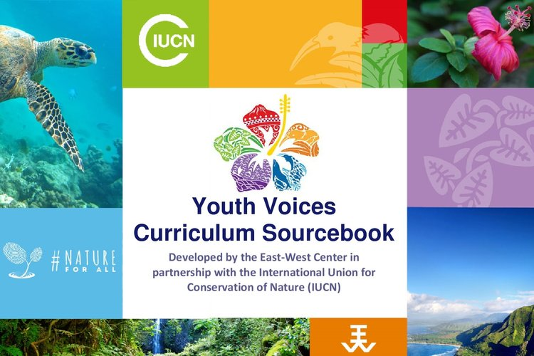 Youth Voices Curriculum Sourcebook - Available in  English ,  French , and  Spanish