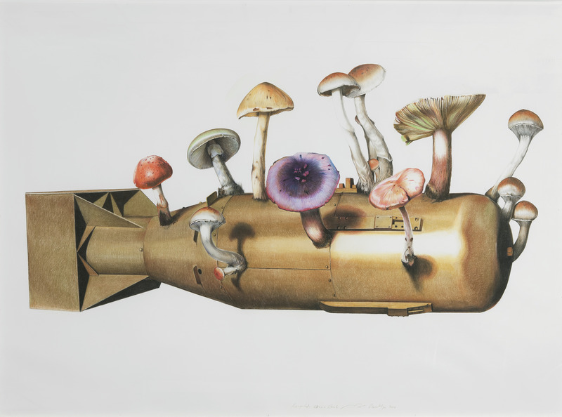 Recycled Atomic Bomb, 2010. Charcoal and pastel on paper, 58 1/2 x 81 in.