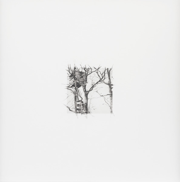 11 de diciembre de 2012, de la serie Diario (December 11th, 2012, from the series Diary). Graphite on paper. 15 3/4 x 15 3/4 in.