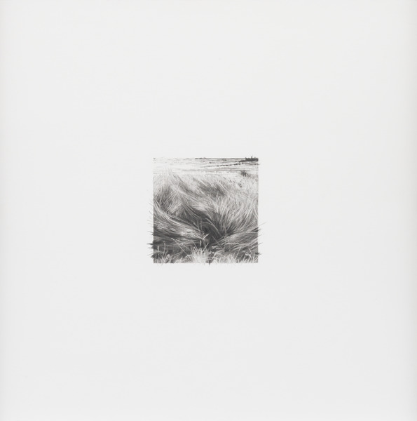 7 de diciembre de 2012, de la serie Diario (December 7th, 2012, from the series Diary). Graphite on paper. 15 3/4 x 15 3/4 in.