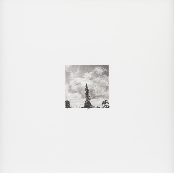 23 de junio de 2012, de la serie Diario (June 23rd, 2012, from the series Diary). Graphite on paper. 15 3/4 x 15 3/4 in.
