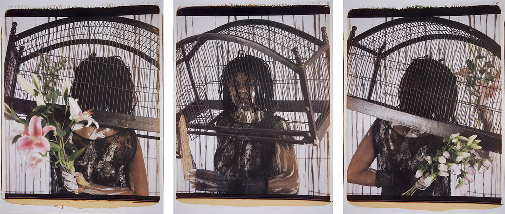 Songs of Freedom, 2013. Polaroid photograph. Three panels of 28 3/4 x 21 3/4 in. each