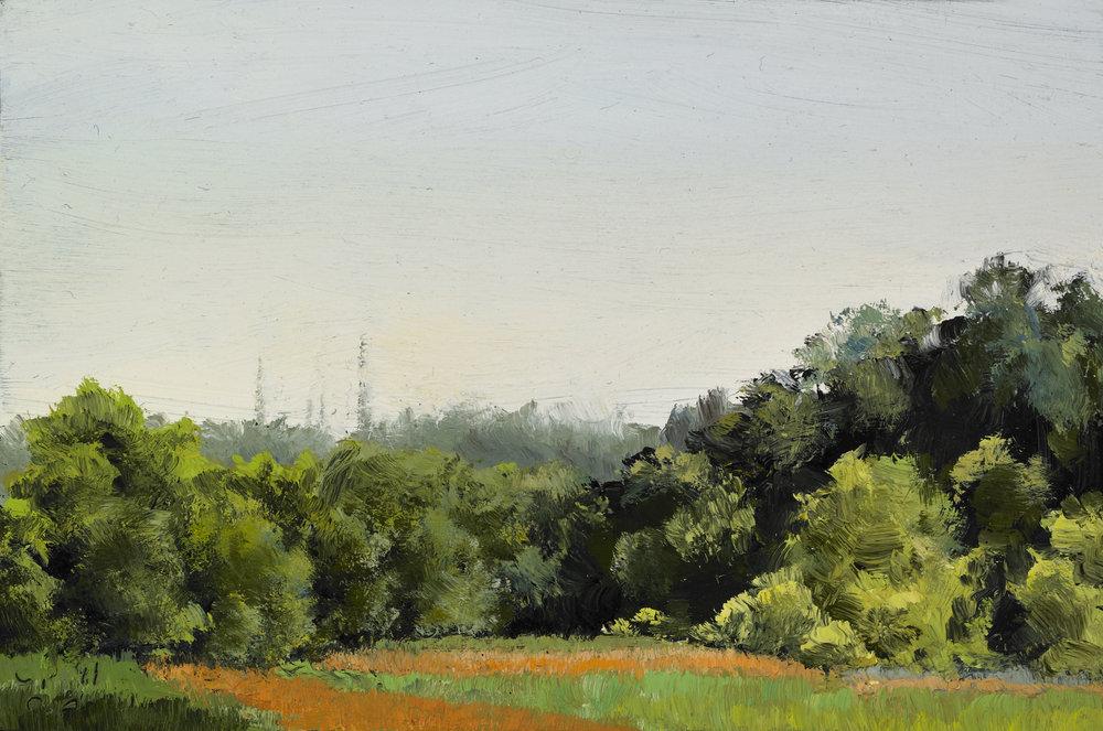 "Summer Field , Oil on Wood Panel, 2011, 3 1/2"" x 5 1/4"""