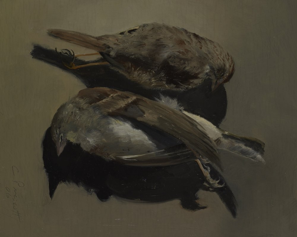 "Two Brown Birds , Oil on Wood Panel, 2006, 10"" x 8"""
