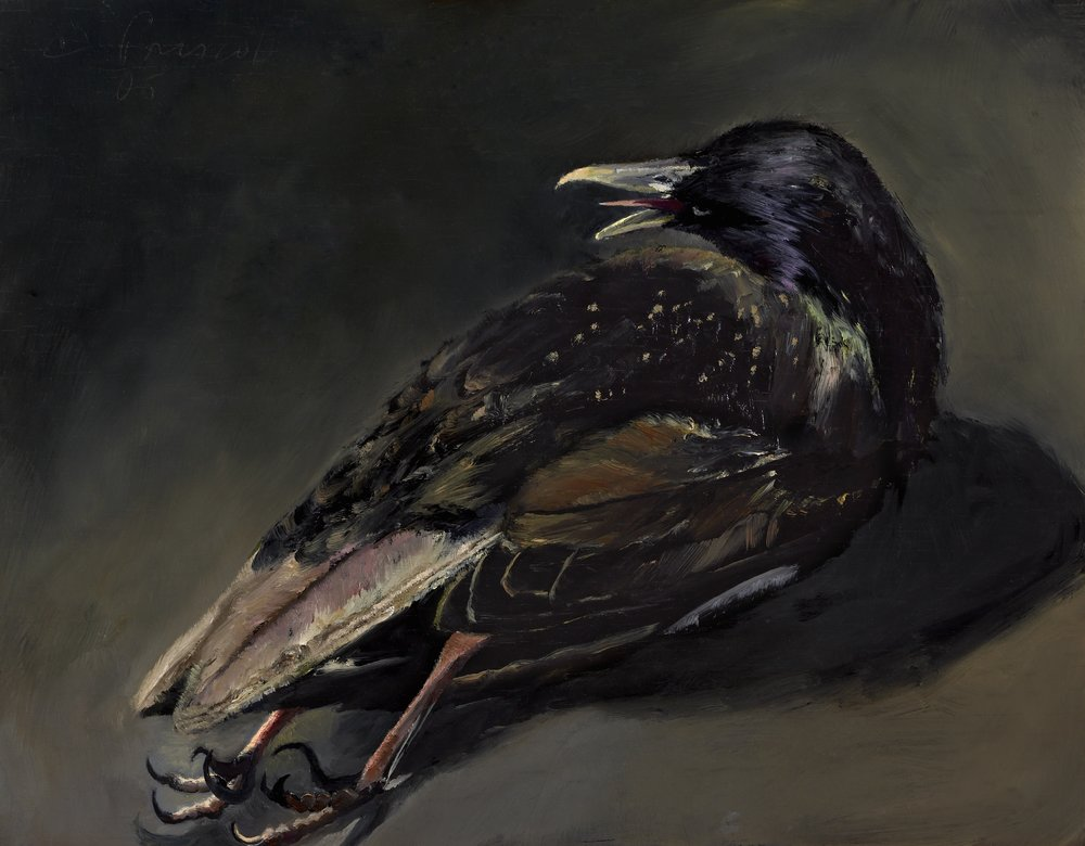 "Starling , Oil on Wood Panel, 2006, 7"" x 9"""