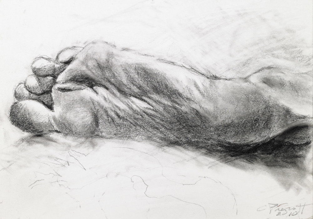 "Study, graphite on paper, 7""x10"", 2010"