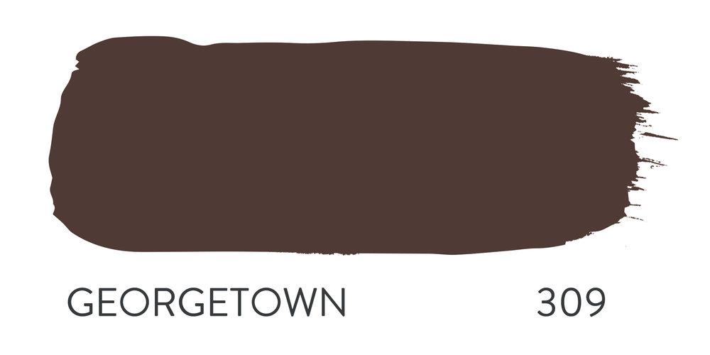 GEORGETOWN 309.jpg