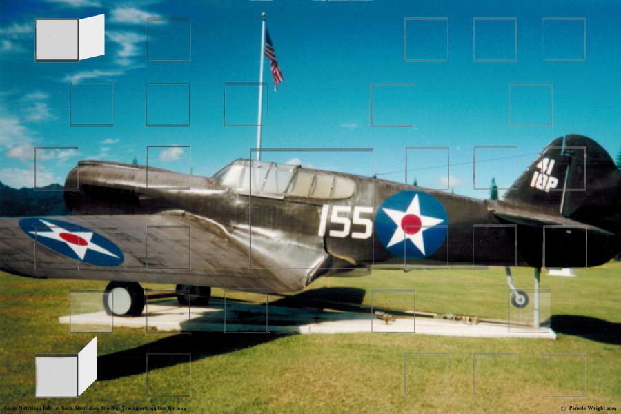ArmyAirForcejetWWII_small.jpg
