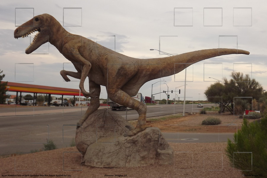 dinosaurDouglasAZ_small.jpg