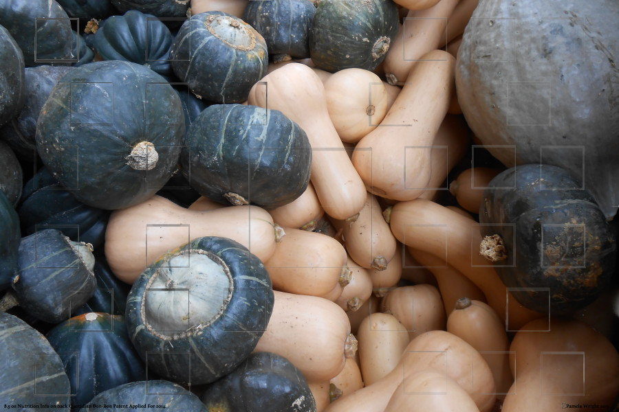 mixedsquash_small.jpg