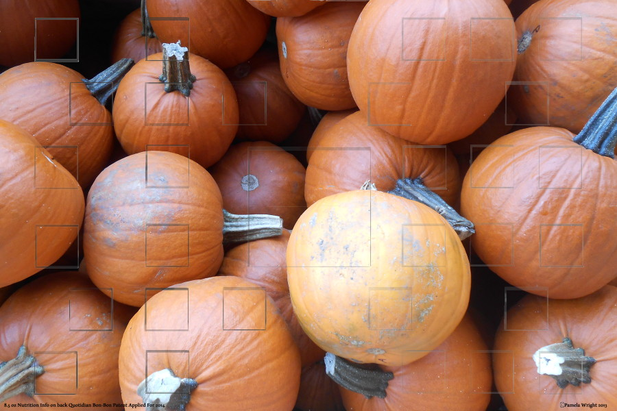 pumpkins_small.jpg