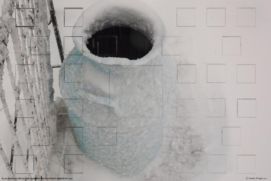 snowcoveredmilkjugsmall.jpg