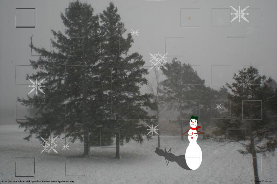 snowmaninastorm_small.jpg