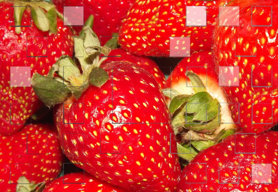 strawberries_small.jpg