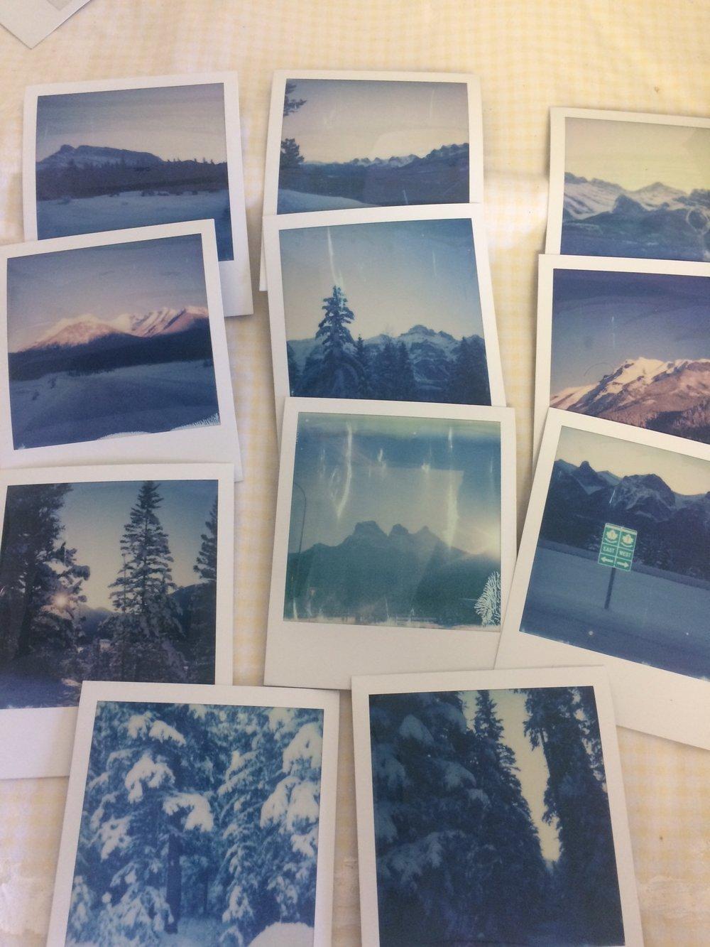 Landscape Polaroids Jan 1 2018.JPG