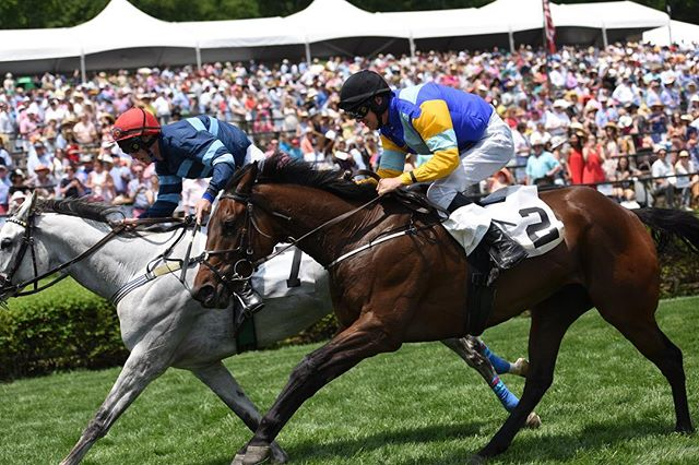 Thursdays are for throwing it back #TBT 🏇🏼 #TNSteeplechase 📸: Jim Meadows