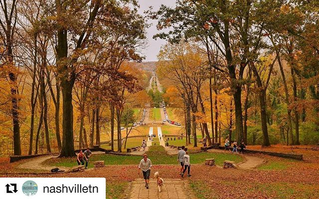 Happy First Day of Fall! (Only two more seasons until our favorite!) 🍂 #Repost @nashvilletn with @get_repost 🍁 You know what they say... Fall is coming!  Photo by @hseng01