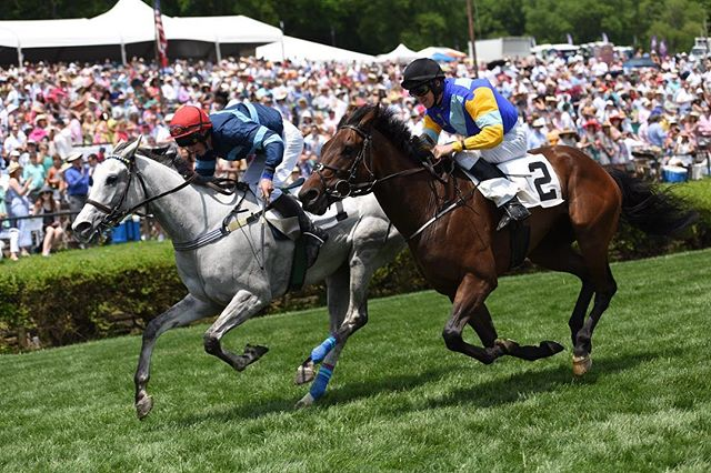 There's just something so beautiful about this sport #TBT #TNSteeplechase 📸: Jim Meadows