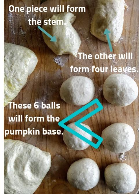 These will form pumpkin..jpg
