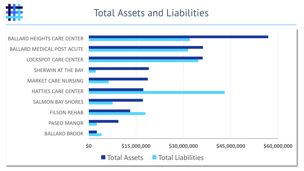 Nursing Home and Skilled Nursing Facility Assets and Liabilities