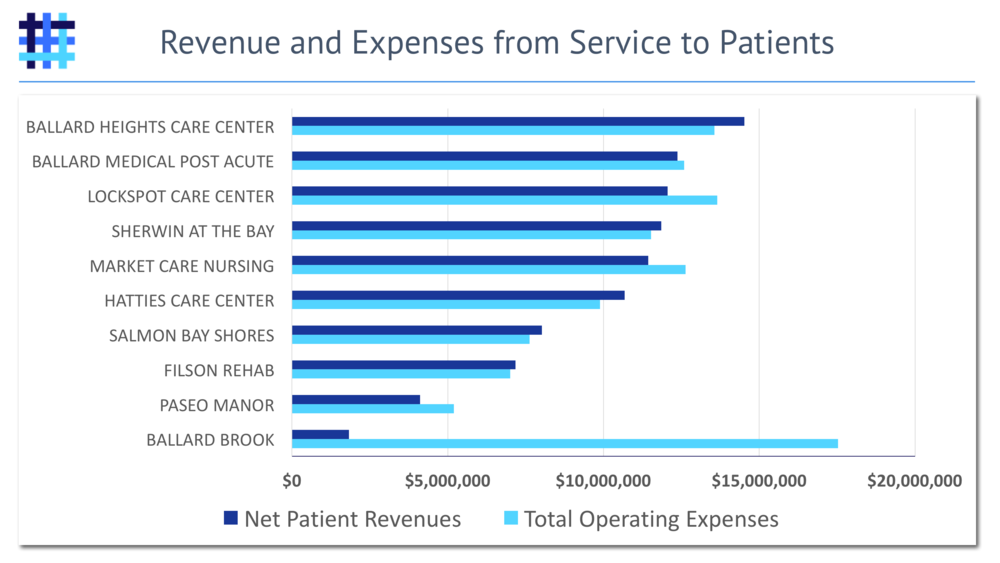 Nursing Home Revenue from Service to Patients and Expenses