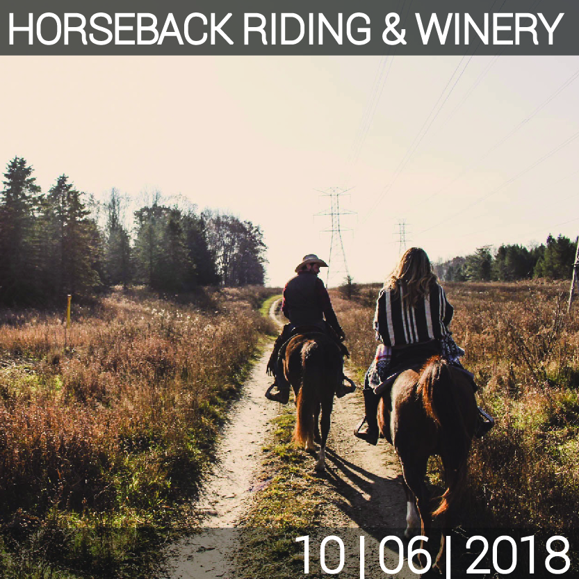 10_06_HORSEBACK_WINERY-01.jpg
