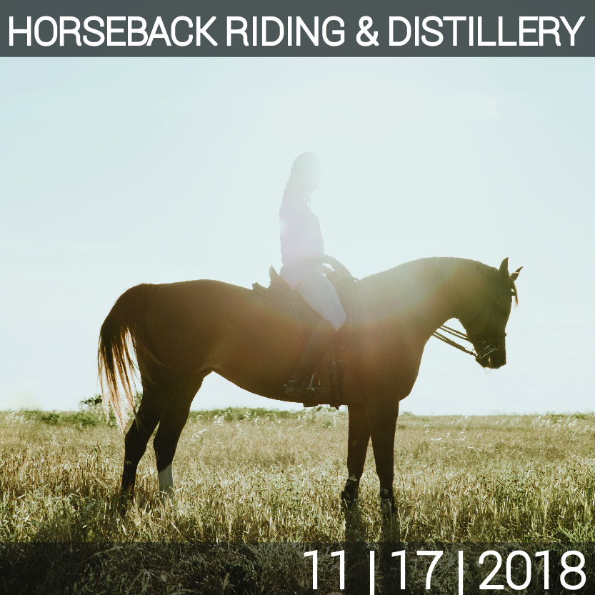 11_17_HORSEBACK_WINERY-01.jpg