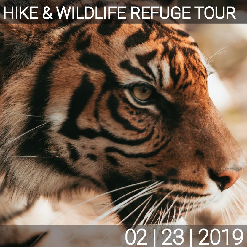 02_23_Hike_Wildlife-01-01.png