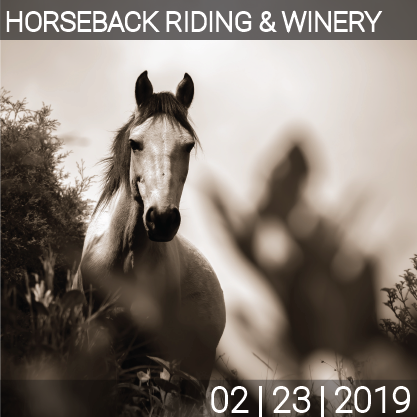 02_23_Horse_Winery-01.png
