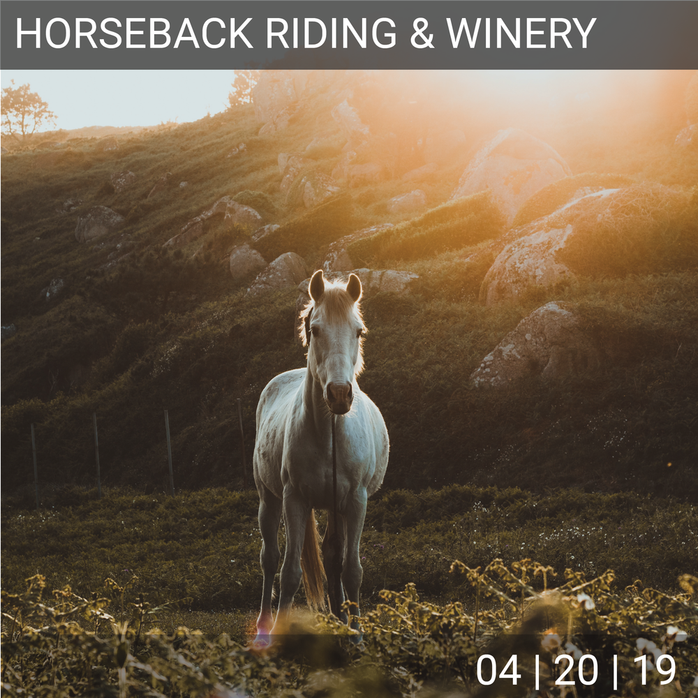 04_20_Horse_Winery-01.png