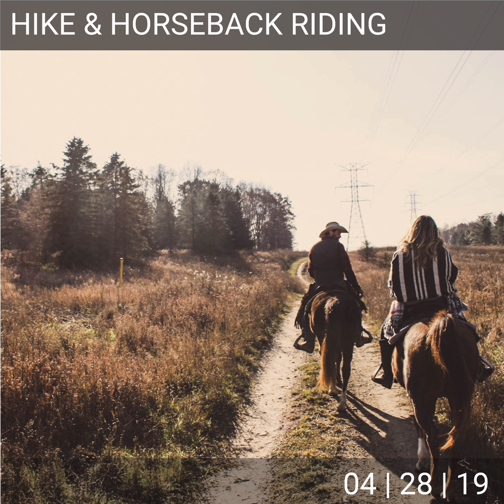 04_28_Hike_horse-01.png