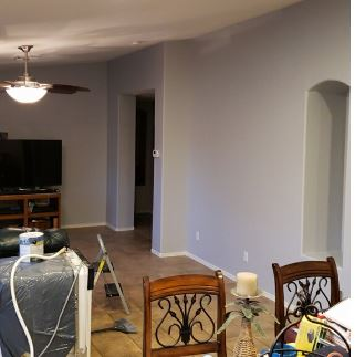 living room in progress.JPG