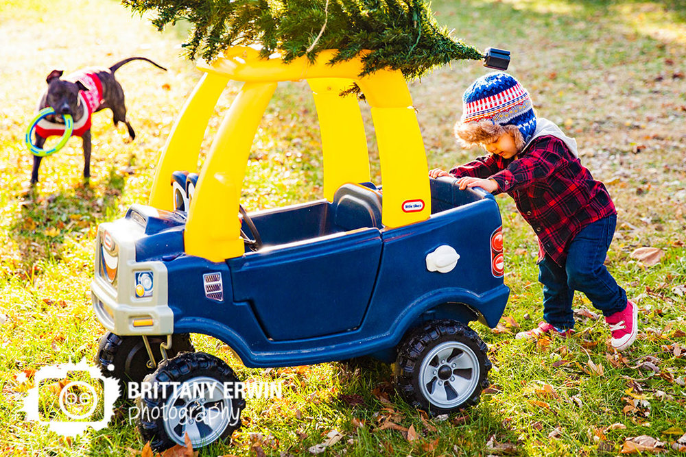 Speedway-christmas-card-boy-toddler-pushing-truck-photographer-dog-sweater.jpg