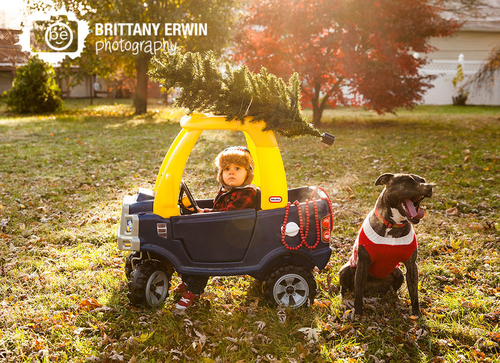 Speedway-Indiana-christmas-card-photographer-toddler-boy-in-toy-truck-tree-with-dog-pit-bull.jpg