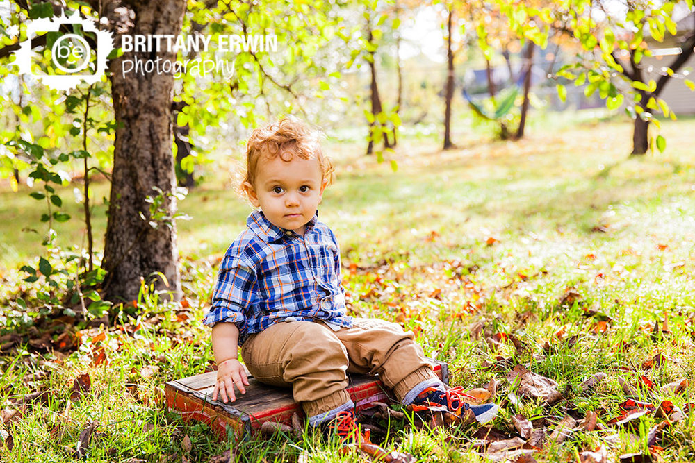 Indianapolis-fall-portrait-toddler-boy-Indy-photographer-Brittany-Erwin-Photography.jpg