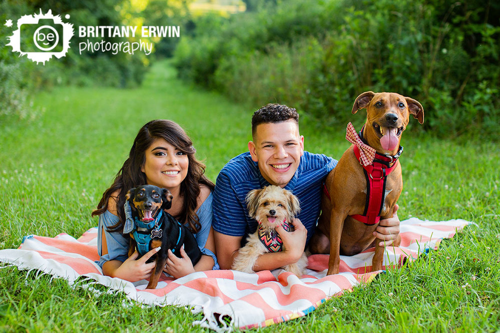 Pet-photographer-summer-picnic-blanket.jpg