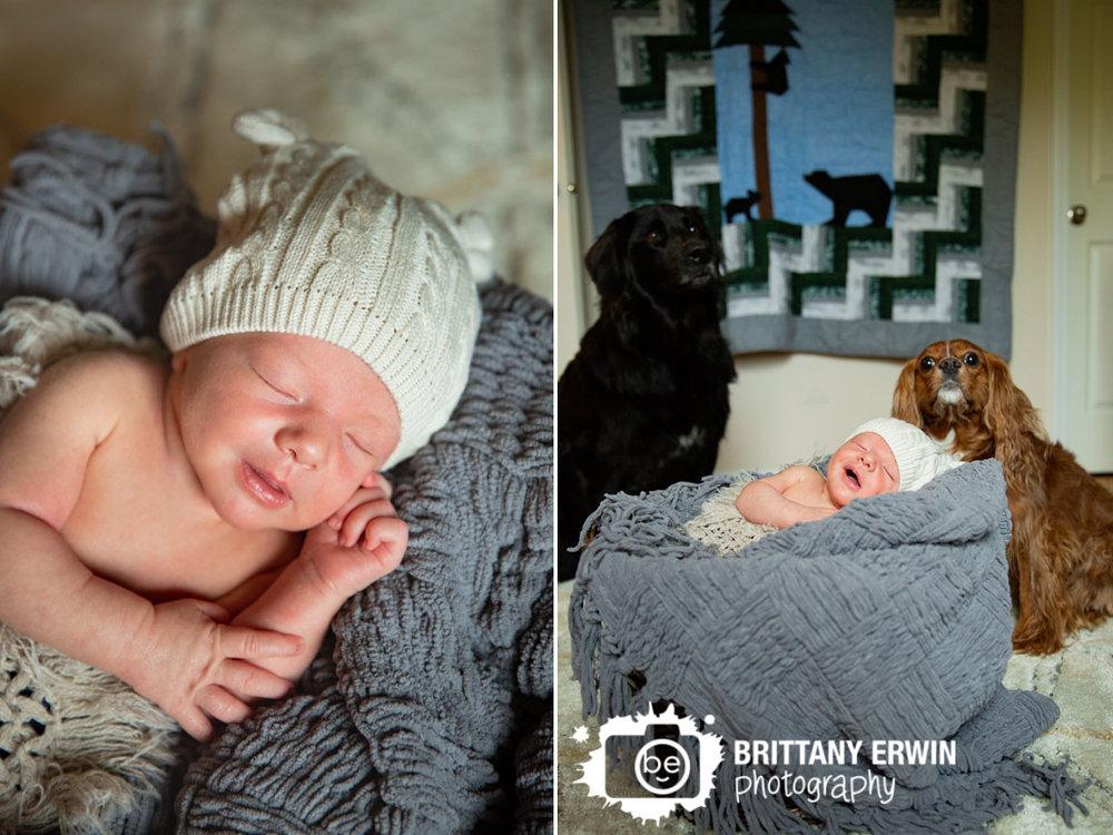 Bear-ear-hat-newborn-baby-boy-dogs-sitting-by-sleeping-babe-lifestyle-photographer.jpg