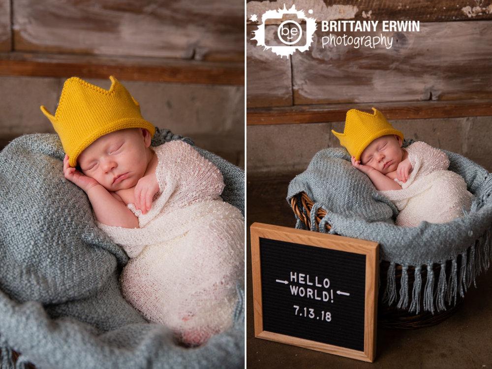 where-the-wild-things-are-crown-newborn-baby-boy.jpg