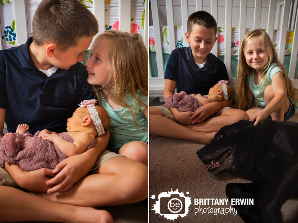 Indianapolis-newborn-lifestyle-portrait-photographer-family-pet-brother-sister-in-nursery.jpg