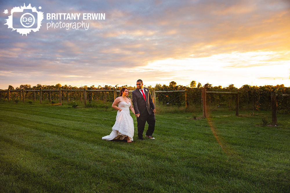 Indianapolis-wedding-photographer-couple-walking-through-vineyard-at-mallow-run-winery-sycamore-sunset.jpg
